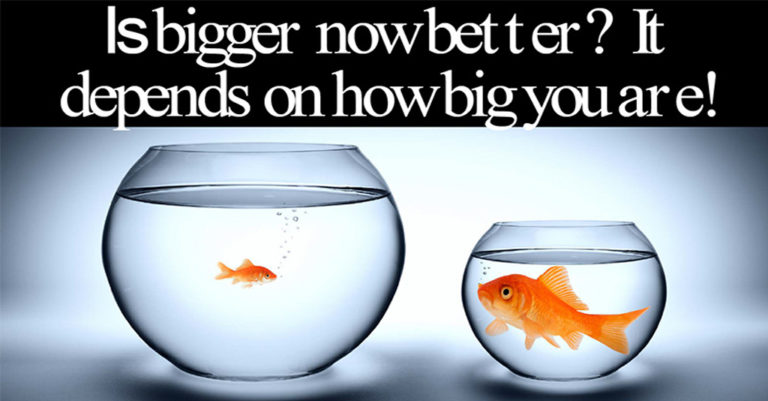 Acquire or be Acquired - Is Bigger Now Better